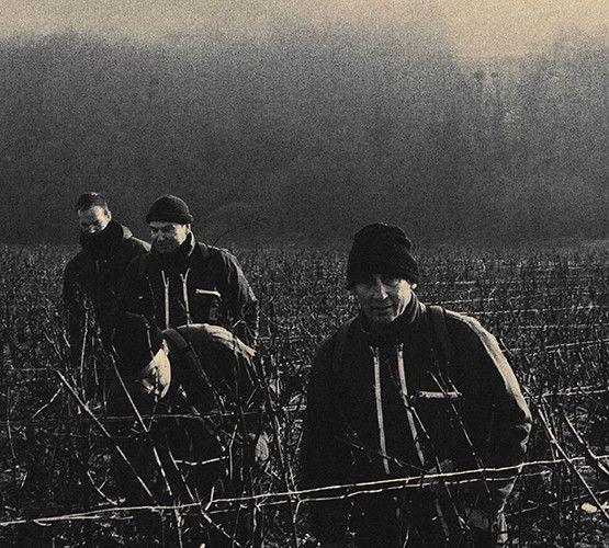 Travail de la vigne en équipe